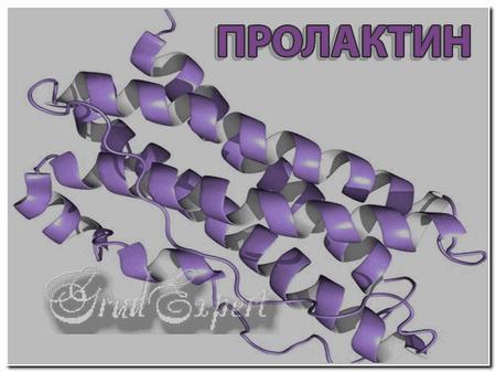 Низкий уровень пролактина у мужчин